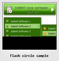 Flash Circle Sample