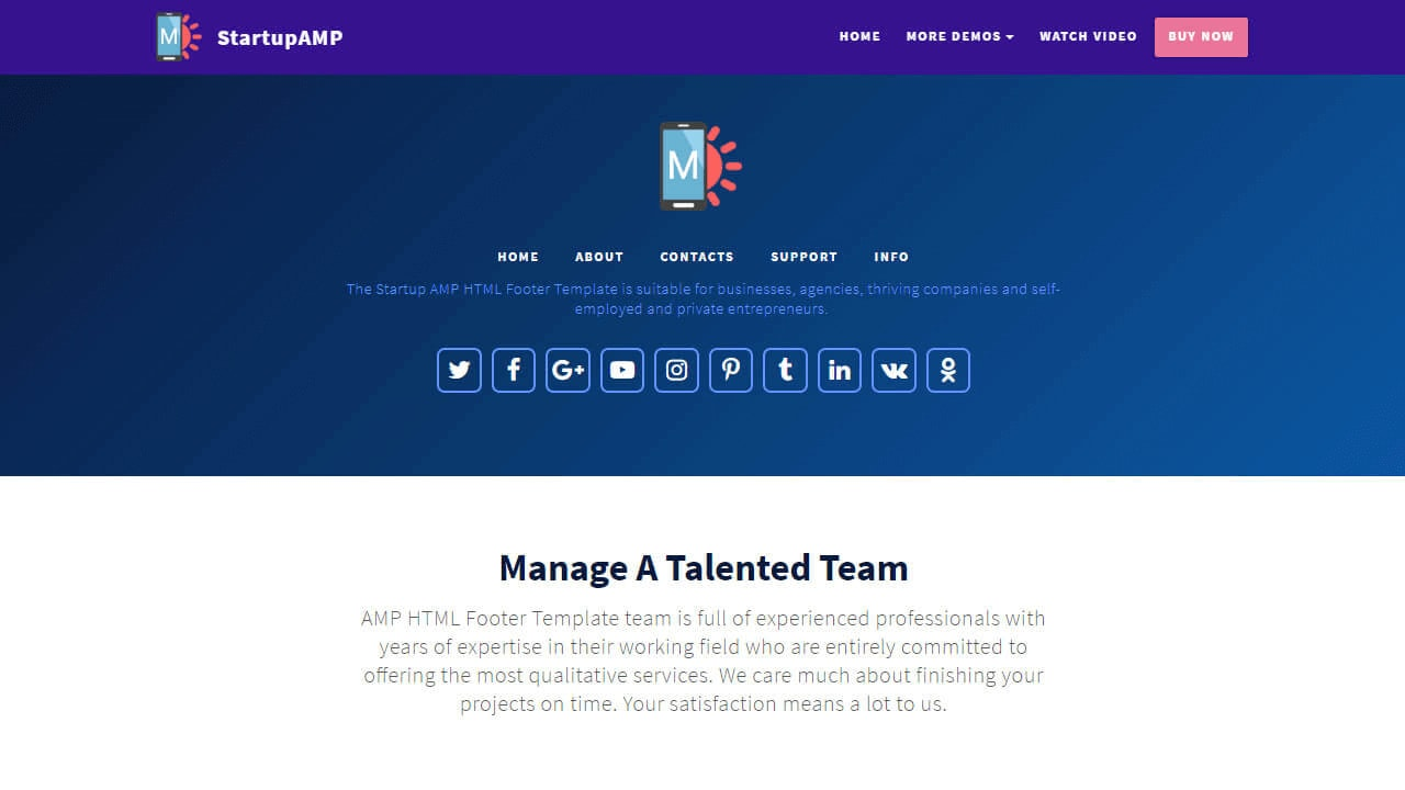 AMP HTML Footer Template